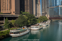 Chicago River Tour Boats